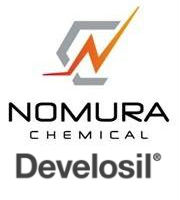 Nomura Chemical Develosil PAHS-5 Semi micro, 5µm, ID 2 mm x L 150 mm - PAHS520150W?
